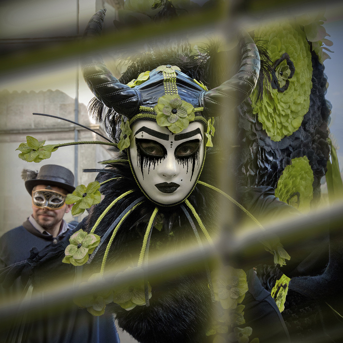 La pavane vénitienne - Dominique Godet Atelier Focale 16, exposition photo à l'incontournable