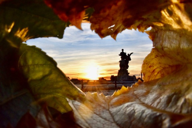 Lumière d'automne, Jean Charles Tardieu, Atelier Focale 16, exposition photo à l'incontournable