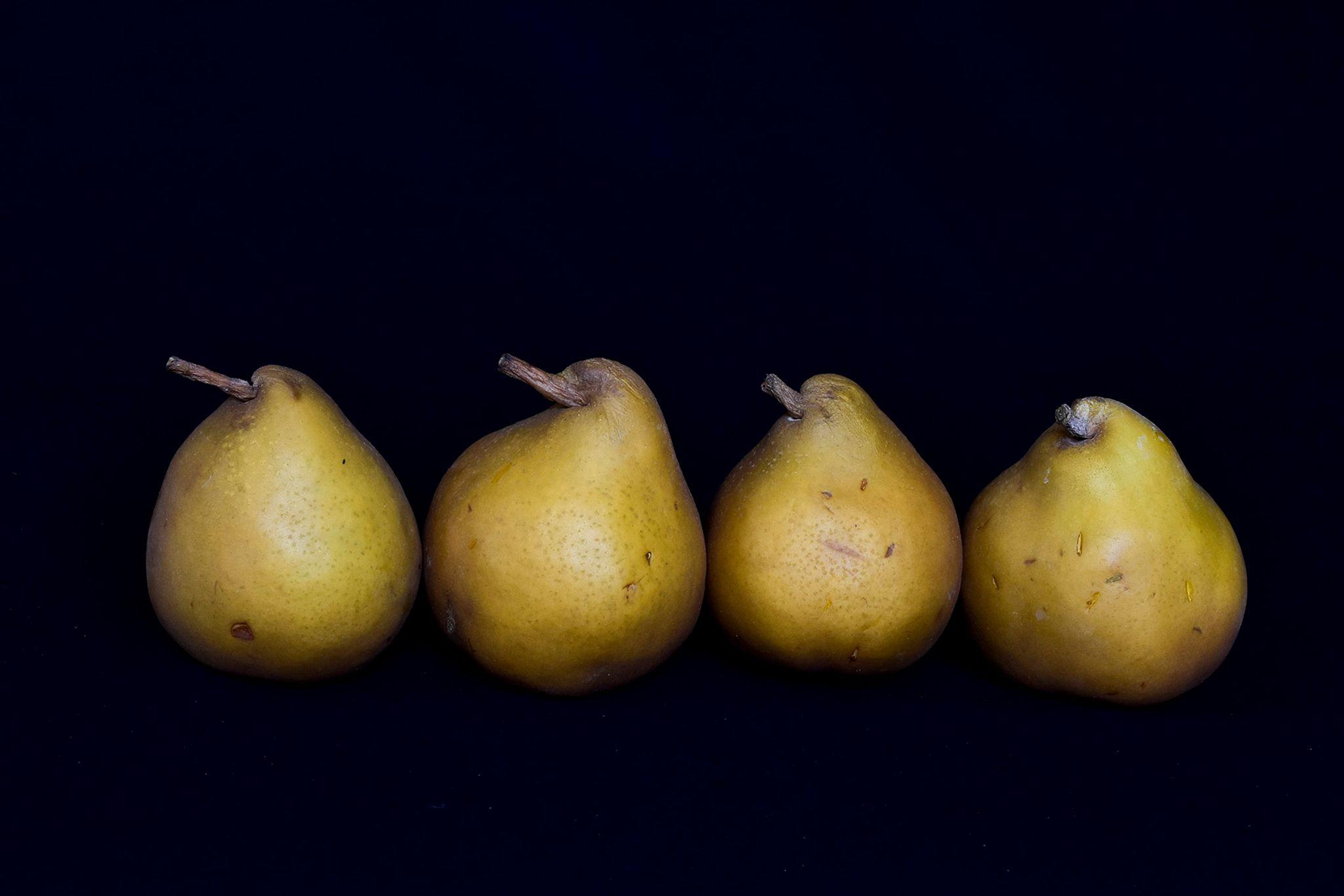 Nature morte, Gérard Viel, Atelier Focale 16, exposition photo à l'incontournable